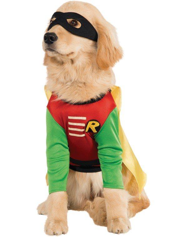 Robin vestido de perro