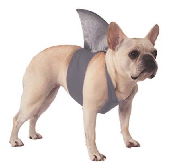 traje de perro