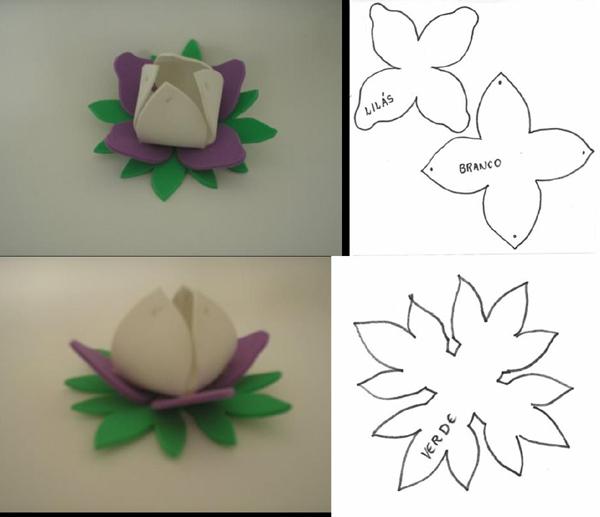 flor de la orquídea eva titular de bombón