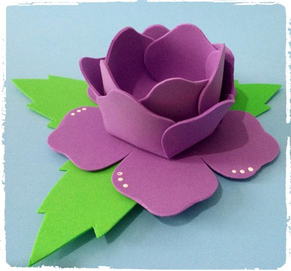 flor morada eva bombonera