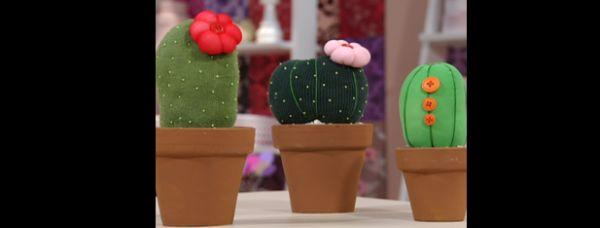 solapa de tela de cactus