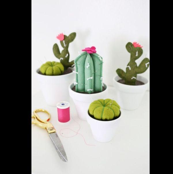 aguja de cactus
