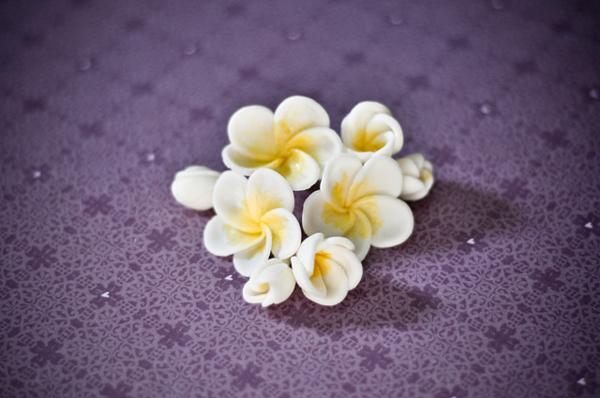 pequeña flor eva